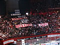 Ice Hockey French Cup 2008 17.JPG