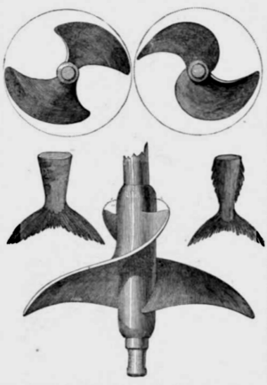 George Rennie (engineer) - Screw-propeller invented by George Rennie imitating the form of a tail fin