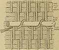 "Image from page 87 of ""Studies in primitive looms"" (1918) (14597813408).jpg"