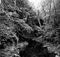 In Ballaglass Glen - geograph.org.uk - 1630433.jpg