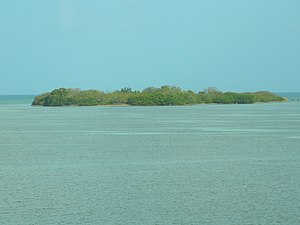 The island of Indian Key where the settlement was located, as seen from U.S. 1 (Overseas Highway)