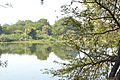 Indrayani River Dehu.jpg