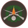 Insignia of Latvian Land Forces Mechanized Infantry Brigade.png