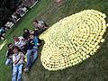 International students at apple festival.JPG