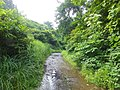 Inubushi, Tokamachi, Niigata Prefecture 942-1504, Japan - panoramio (1).jpg