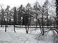 Irkutsk. Akademgorodok. February 2013 - panoramio (10).jpg