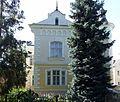 Ivano-Frankivsk Shevchenka 102-3.jpg