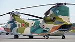JASDF CH-47J(LR)(37-4501) Left Rear View at Iruma Air Base Nobember 3, 2014 02.JPG