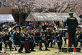 JGSDF Eastern Army band.jpg