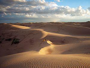 Samalayuca Dune Fields - Samalayuca Sand Dunes