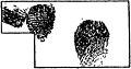 Jaëll - L'intelligence et le rythme dans les mouvements artistiques, 1904 (page 74 crop fig 21).jpg