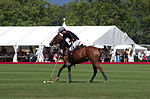 Jaeger-LeCoultre Polo Masters 2013 - 31082013 - Match Legacy vs Jaeger-LeCoultre Veytay for the third place.jpg