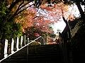 Jakkoin (Inuyama).jpg