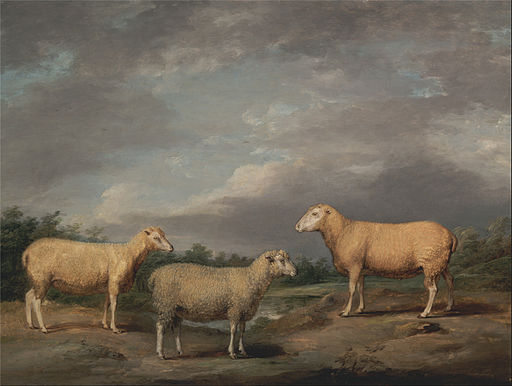 James Ward - Ryelands Sheep, the King's Ram, the King's Ewe and Lord Somerville's Wether - Google Art Project