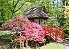jardin japonais dans le park de clingendael