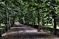 Jardines del Buen Retiro (Madrid) 32.jpg