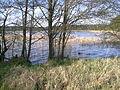 Jezioro Trzemeszno - panoramio - geo573 (1).jpg
