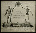 John Abernethy; certificate showing a skeleton and an écorch Wellcome V0000023.jpg