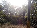 KURUMBAPATTI ZOOLOGICAL PARK, SALEM - panoramio (8).jpg