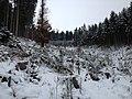 Kahlschlag - panoramio.jpg