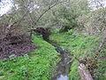 Kenyérmezői Stream upstream of Dorog.JPG