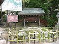Kibitujinja5039.JPG