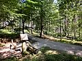 Kneippanlage Moosknockbrunnen - panoramio (1).jpg