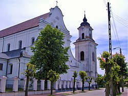 Kościół pw. Najświętszej Marii Panny w Drohiczynie.JPG