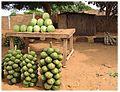 Koni with kinkeliba bundles and watermelon.jpg