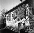 Koruza se v kitah suši pred hišo, Male Lipljene 1948.jpg
