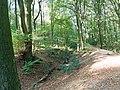 Krefeld Forstwald Reste der Landwehr (Schlacht auf der Kempener Heide) 3.jpg