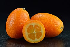 Kumquat from Spain.jpg