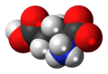 L-Glutamic-acid-zwitterion-3D-spacefill.png