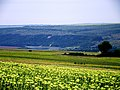 L128, Moldova - panoramio (4).jpg