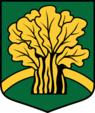 LVA Dzelzavas pagasts COA.png