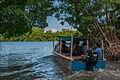 La Restinga Lagoon National Park 5.jpg