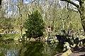La nature autour du pont rustique (26037550670).jpg