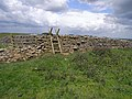 Ladder stile on the St Oswald's Way - geograph.org.uk - 1355113.jpg
