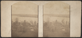 Lake view, probably Skaneateles Lake (N.Y.), by Edwards, J., fl. 185--186-.png