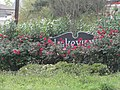 Lakeview Sign Flowers.jpg