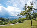 Landscape of Bjelusa - 7408.CR24.jpg