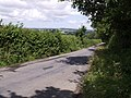 Lane to Black Torrington - geograph.org.uk - 495302.jpg