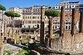 Largo di Torre Argentina (31585540527).jpg