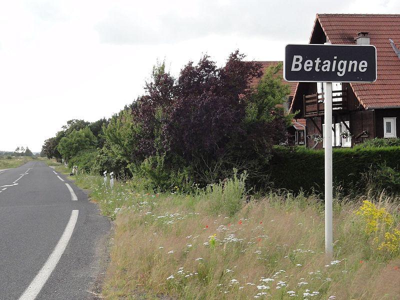 Laronxe (M-et-M) city limit sign Betaigne