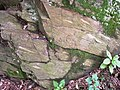 Laurel Formation (4801611117).jpg