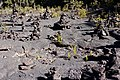Lava rock cairns at Kiluea Iki volcano crater.jpg