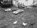 Legeroefeningen West Duitsland, Bestanddeelnr 906-7512.jpg
