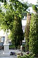 Legionowo,Polska,UE. - panoramio - Roman Eugeniusz (102).jpg