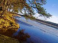 Lielupes krasts - panoramio.jpg