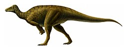 Life restoration of Hippodraco.jpg